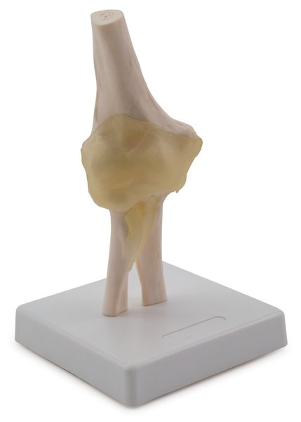 ELBOW JOINT 6042.30