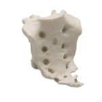 Sacrum with Coccyx - code: 6041.14